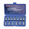 "Westward 4YP58 Socket Bit Set,  3/8"" Dr,  13 pc"
