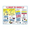 Brady PS139E Training Poster, 18 x 24In, Laminated PPR