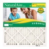 NaturalAire 84858.01203 20x25x1 Pleated Furnace Filter, Pack of 12
