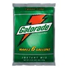 Quaker Foods & Beverages 33673 32PK21OZ Ripti Gatorade
