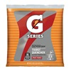 Quaker Foods & Beverages 33691 32PK21OZ Punch Gatorade