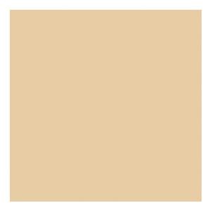 Rust-Oleum 208078
