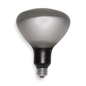GE Incandescent Heat Lamp, R40, 250W at Sears.com