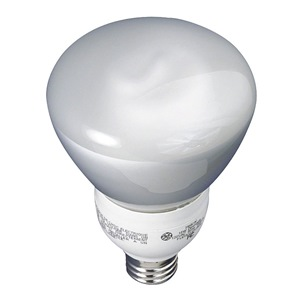 GE Lighting FLE15/2/R30/DV/827