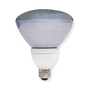 GE Lighting FLE26/2/PAR38/XL