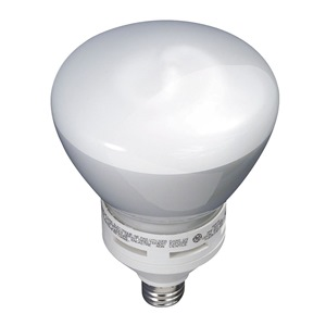 GE Lighting FLE26/2/R40XL827