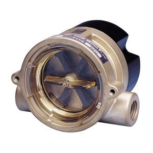 """Gems Sensors RFO  1/2"""" NPT BR"""