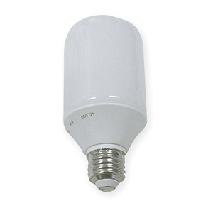 GE Lighting FLE20/2/T19/XL