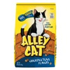 Big Heart Pet Brands 2927451859 13.3LB Cat Dry Food