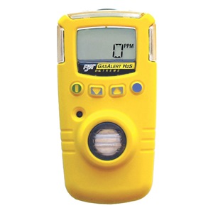 BW Technologies GAXT-A-DL
