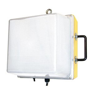 W F Harris Lighting 1200-WL-100-MH