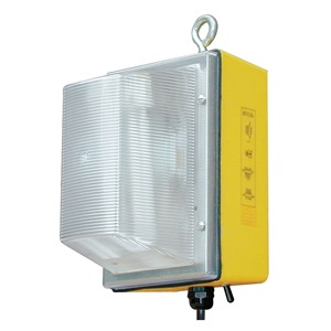 W F Harris Lighting 300-WL-50-MH