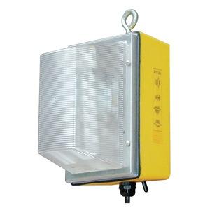 W F Harris Lighting 300-WL-50-MH