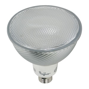 GE Lighting FLE23PAR38FL3000