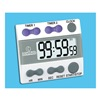 Control Company 8212 Digital Timer, 3/4 In. LCD, 2 Channels