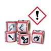 Ghs Safety GHS1263 Pictogram Label, Black/Red, Glossy Paper