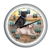 Taylor 90007-60 13.25 Labra Thermometer