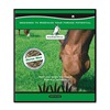Dlf International Seeds FORUN103 5LB Horse Pasture Mix