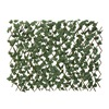 Easy Gardener Inc 82028 39x92 IVY Expand Fence