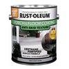 Rust-Oleum 262365 GAL GRY Sat Porch Paint