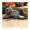 Allen Group Intl Inc AG59041 Frog/Crown Statue