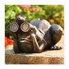 Allen Group Intl Inc AG59040 Frog/Binoculars Statue