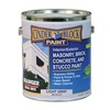 Rae 9616-01 Masonry & Stucco Paint, Light Gray, 1 gal.