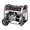 Briggs & Stratton 30608 Port Generator, 5500 Rated Watts, 120/240