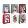 Expressive Design Group Inc CGBA2-85TV MED Gift Bag ASSTD, Pack of 12