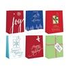 Expressive Design Group Inc CGBA3-81TV LG Gift Bag ASSTD, Pack of 12