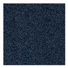 Andersen 03950020320000 Entrance Mat, Navy, 3 x 20 ft.