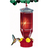 Woodstream Corp 201 Lantern Humming Feeder