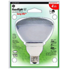 G E Lighting 47483 GE 26W PAR38 FLD Light