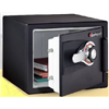 Sentry Group DS0200 MED BLK Fire Comb Safe