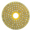 Diamond Vantage S-4WVPP-60 Wet Vitrified Polishing Pad, 60 Grit
