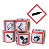 Ghs Safety GHS1258 Pictogram Label, Black/Red, Glossy Paper