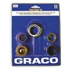 Graco 248213 Pump Repair Kit, Line Striping
