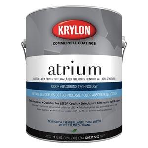 Krylon K01317250-16
