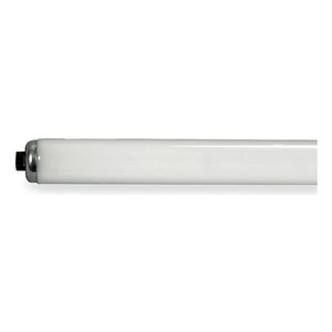 GE Fluorescent Lamp, T12, Daylight, 6500K, Pack of 15 at Sears.com