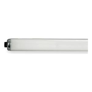 GE Lighting F96T12/CW/HO/WM/ECO