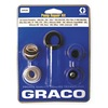 Graco 244194 Pump Repair Kit