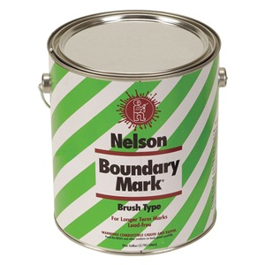 Nelson Paint 29 5 GL WHITE