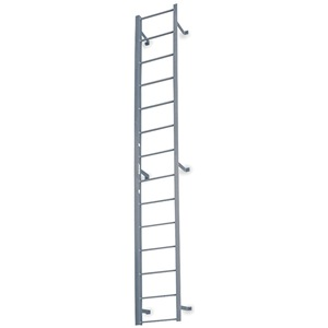 COTTERMAN Fixed Ladder, 19 ft. 3 In H, Steel at Sears.com