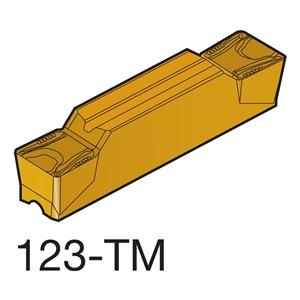 Sandvik Coromant N123K2-0600-0008-TM 1145
