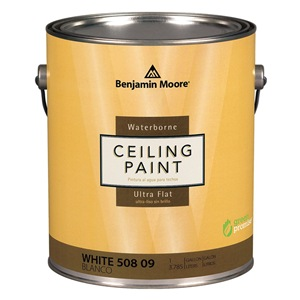 Benjamin Moore 05082X0010098093