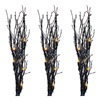 Noma/Inliten-Import V37014 3PC BLK Glitter Twigs