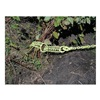 Approved Vendor BG-16 Shrub/Clump Grubber