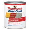 Thompsons Waterseal 24104 QT CLR WTR Sealer