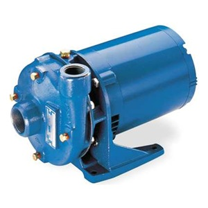 Goulds Water Technology 2BF11034