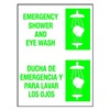 Brady 38481 Eye Wash Sign, 14 x 10In, GRN/WHT, AL, SURF